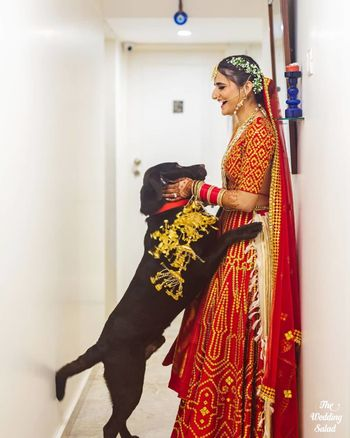bride wearing kaleere with her dog