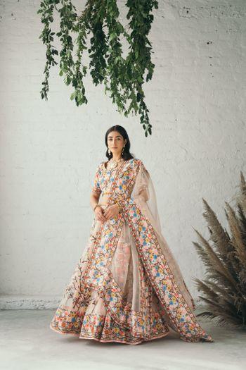 Beautiful multi coloured lehenga