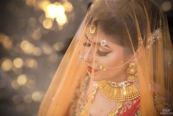 Pretty Bride in Veil Shot