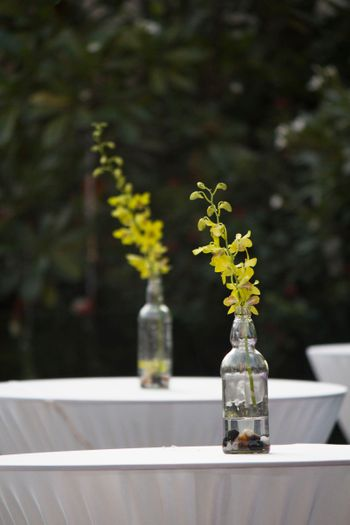 Glass bottles with pebbles and flowers as centerpiece