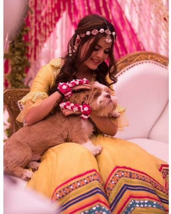 A cute shot of a bride with her dog on her haldi function.