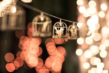 Hanging birdcage lights on string