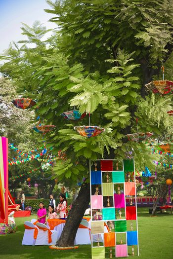 Colourful parasols and cloth decor on tree for mehendi