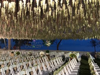Photo of wedding decor