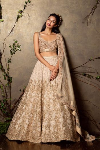 Photo of beige lehenga with gold work