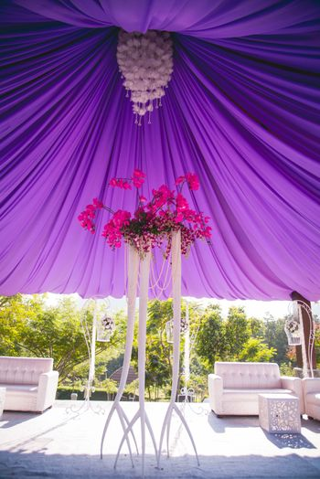 Photo of Purple and white theme tents decor