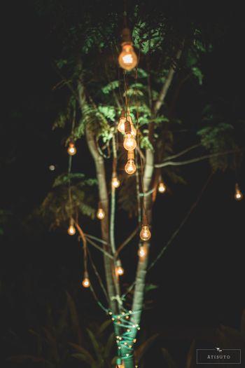Minimal hanging bulbs decor
