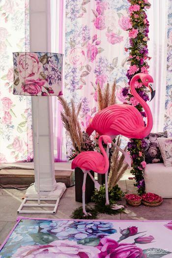 Photo of Flamingo theme decor
