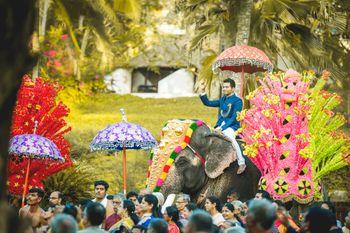 Groom in blue sherwani entering on an elephant