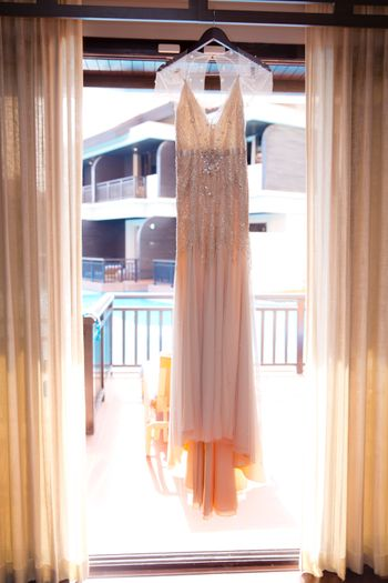blush colored wedding gown