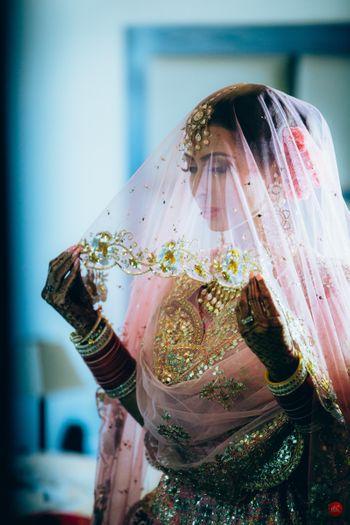 Stunning bride in veil shot!