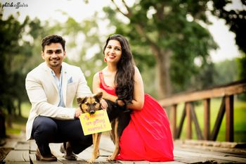 Photo of pre wedding shoot with pets