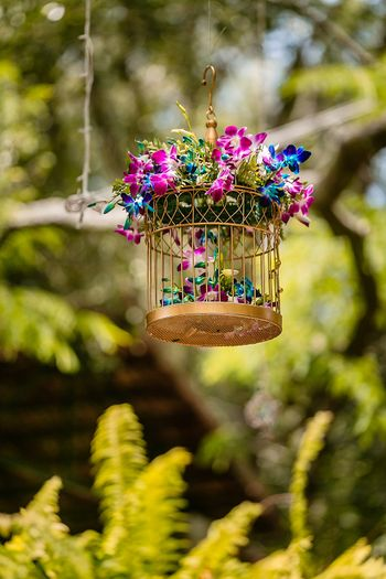 Hanging floral arrangement in gold birdcage
