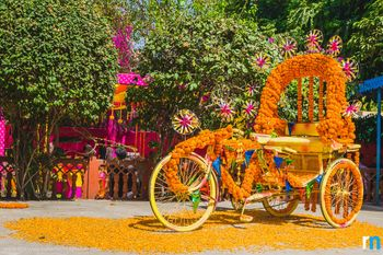 genda flower bicycle