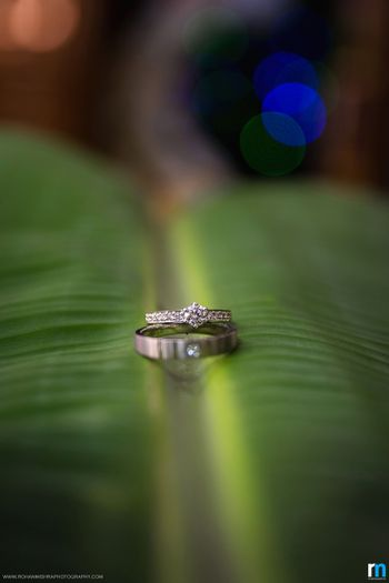 Engagement Couple Rings on a Leaf