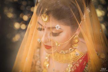 Stunning bride in veil shot