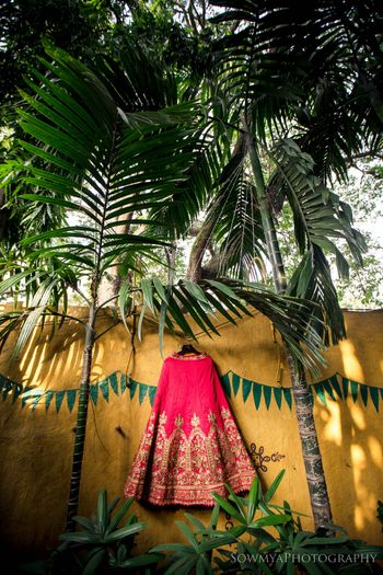 Photo of Pretty pink hanging lehenga shot