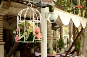 birdcage prop
