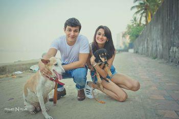 Pre wedding shoot idea with rescue dogs
