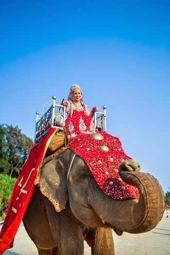 Bride entering on an elephant