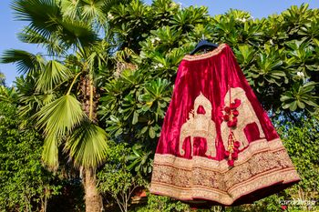 Velvet lehenga with elephant motifs