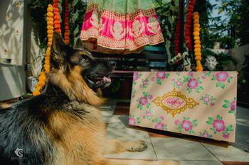 Getting ready shot idea with lehenga box and dog
