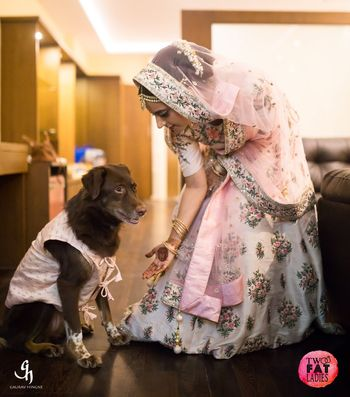 Wedding day bridal shot with dog in clothes