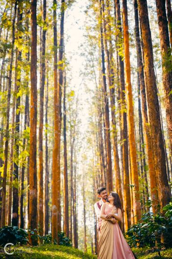 Pre wedding shoot in forest