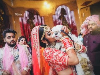 Bride kissing her dog on wedding day