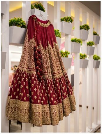 Maroon bridal lehenga on hanger with gold work