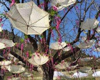 Photo of Upside Down Umbrella Decor