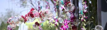 Photo of hanging mason jars with ribbons