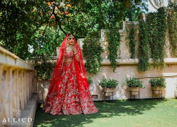 Gold and red bridal lehenga for morning bride