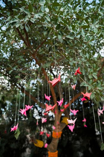 Paper origami cranes hanging from a tree
