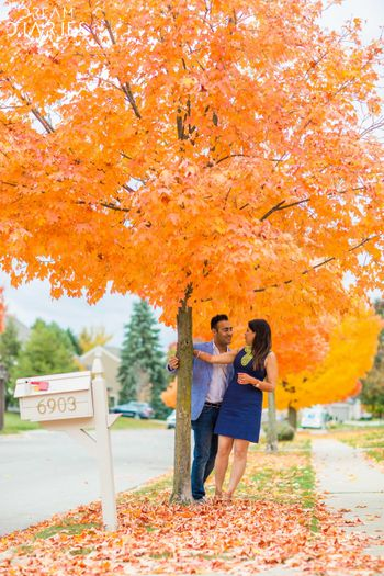 Orange autumn tree pre wedding shoot