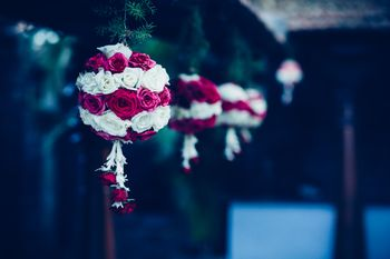 Photo of Pink and White Roses Hanging Balls