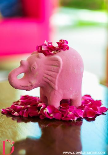 Light Pink Elephant with Rose Petals