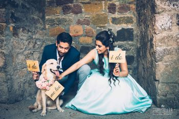 pre wedding shoot with pet and board props