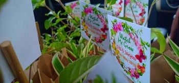 plants with notes as wedding favours