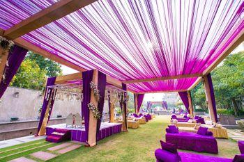 Purple Drape Themes Decor