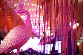 Photo of Peacock Themed Decor