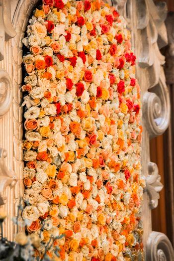 Rose Petals Backdrop