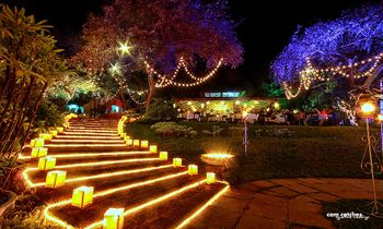 Photo of Fairy Lights in Wedding Decor