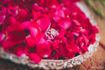 Solitaire Engagement Ring on Rose Petal