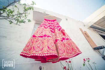 Photo of Hot Pink Bridal Lehenga on a Hanger with Gold Work