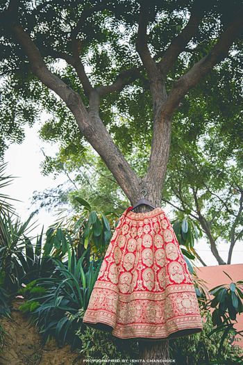 Photo of Red Lehenga with Gold Zardozi Work on Hanger on Tree