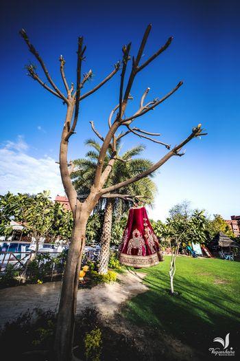 Lehenga on a hanger on a tree