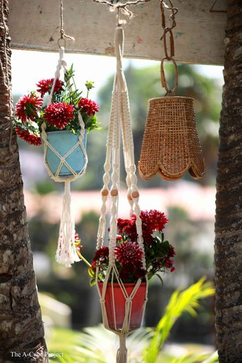 Photo of Hanging planters in decor.