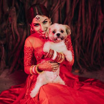 Photo of A cute bridal portrait of bride and her dog