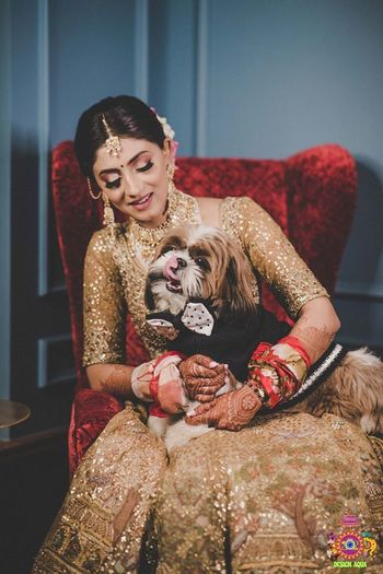 bridal portrait with her dog wearing a tux
